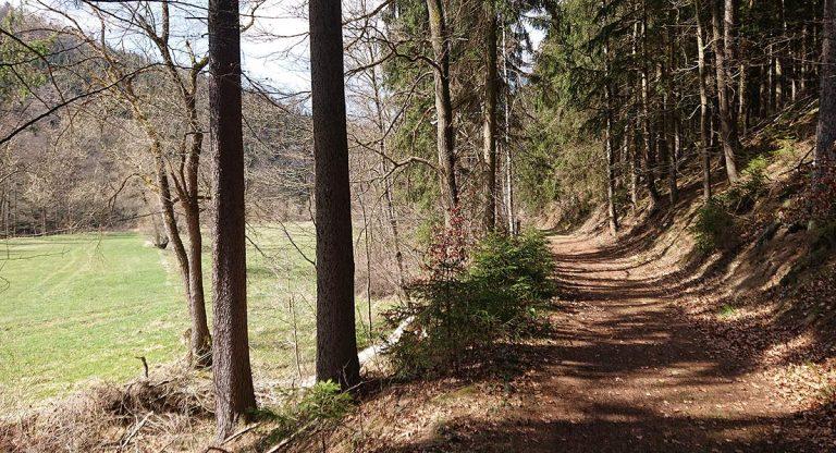 Am Gräfinsteig - Zwönitzaue