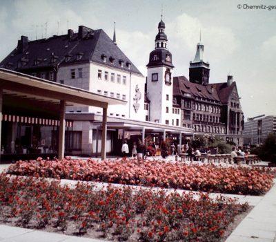 Die zahlreichen Rosenstöcke prägten das Gesicht des Boulevards zu DDR-Zeiten