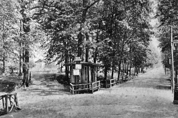 Zugang im Zeisigwald