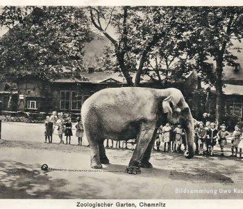 CGH-Sommerzoo-Chemnitz-1926